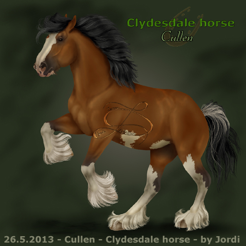 kůň: clydesdale - Cullen