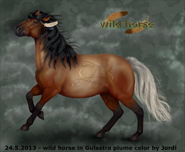 kůň: divoký - White Feather : Bílé pírko