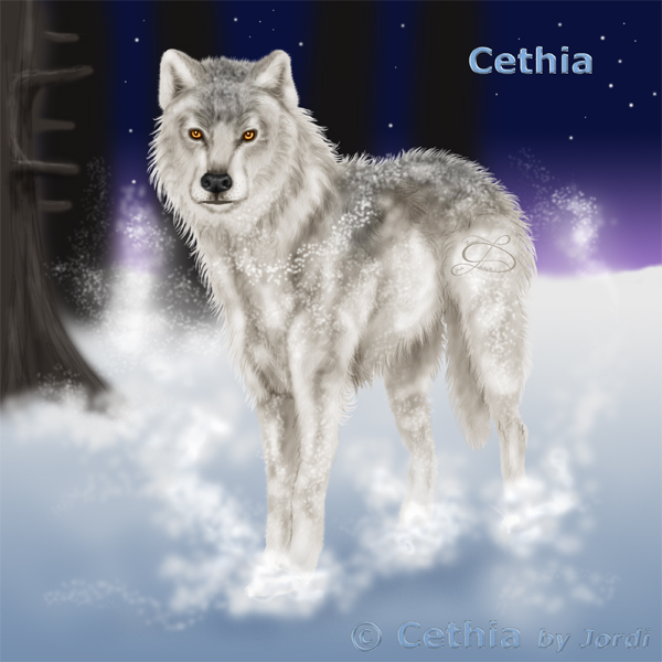 Vlčice: Cethia