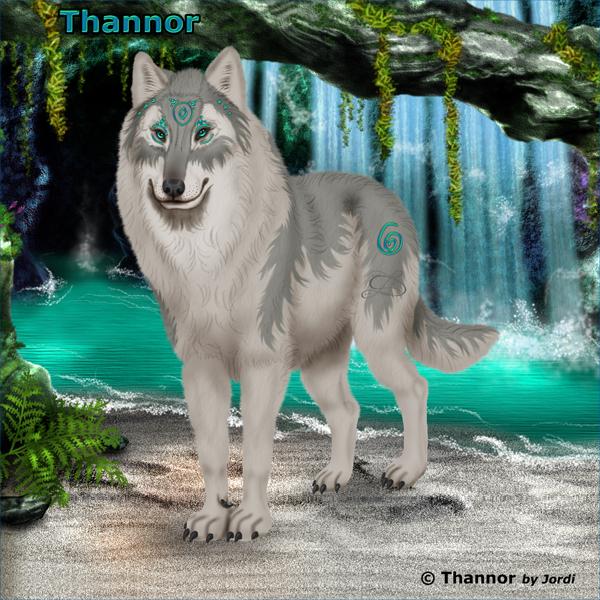 Vlk: Thannor