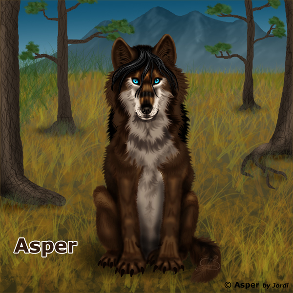 Vlk: Asper