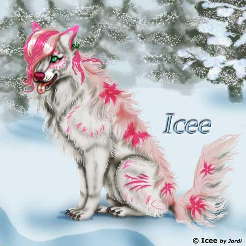 vlčice: Icee