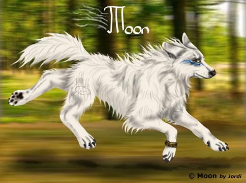 vlčice: Moon