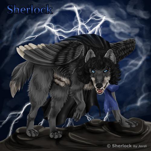 vlk: Sherlock