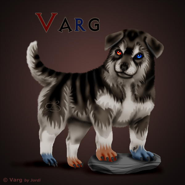 vlče: Varg