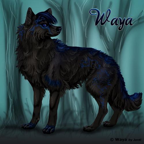 vlčice: Waya
