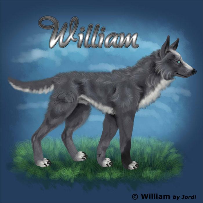 vlk: William